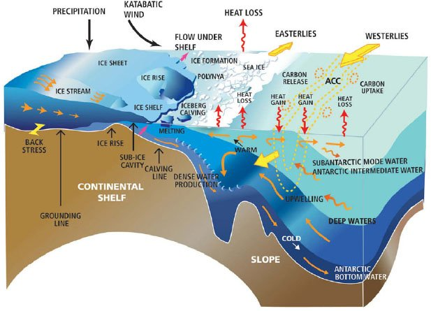 southern ocean upwelling